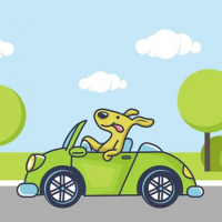 Friv Animal Happy Drive Coloring Online