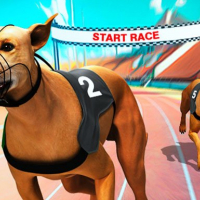 Friv Crazy Dog Racing Fever Online
