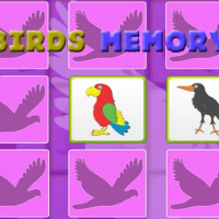 Friv Kids Memory Game - Birds Online