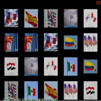 Friv Memorize the flags Online