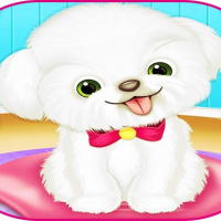 Friv Pets Day Care Pro Online