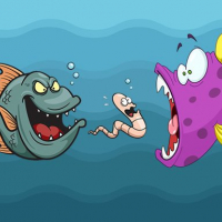 Friv Angry Fish Coloring Online